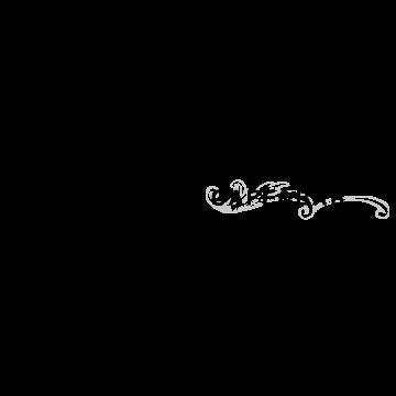vlv_logo_fix